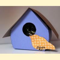 """Dėžutė """"Paukščio namelis"""""""
